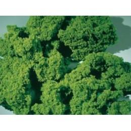 76976 mousse moyenne vert clair 1000ml