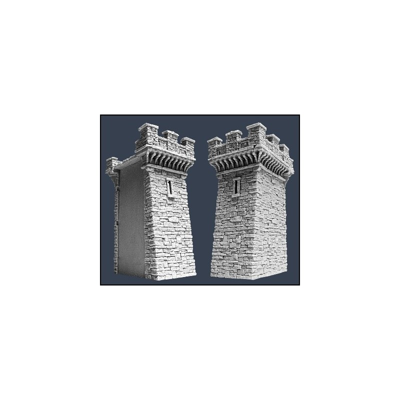 Murs de cité médiévale : section F