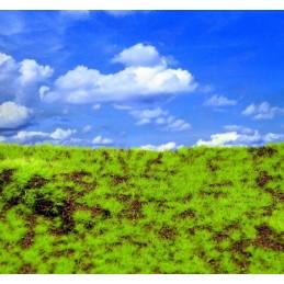 Herbes sauvages et colline III