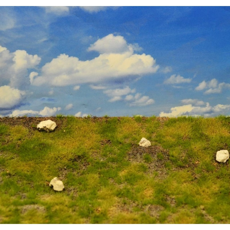 Prairie sèche et rocailleuse
