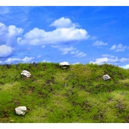 Prairie sèche rocailleuse et collines