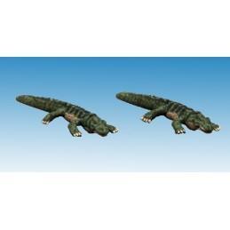 Petits crocodiles