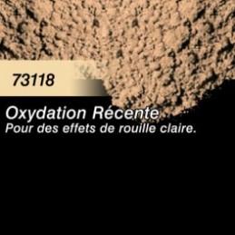 73118 Pigment Oxydation Récente