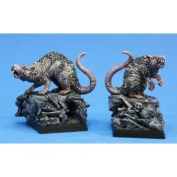 03753 Rats géants
