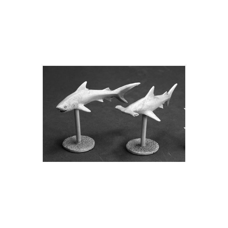 03622 Requins