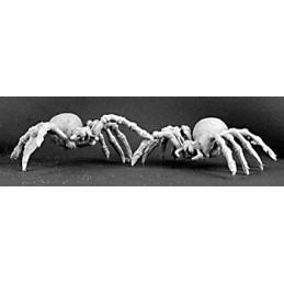 03055 Araignées géantes