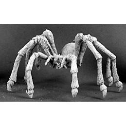 03049 Araignée géante