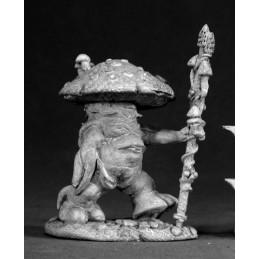 03041 Roi des champignons
