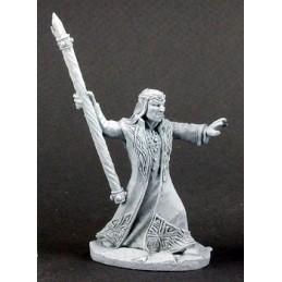 02937 Magicien elfe
