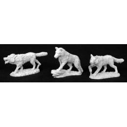 02830 Meute de loups