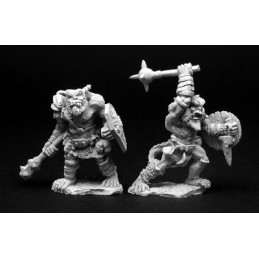 02818 Guerriers Kobolds