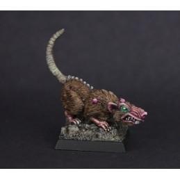 02544 Rats géants