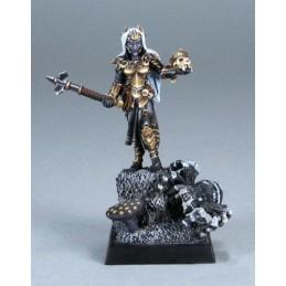 02524 Prêtresse elfe noir