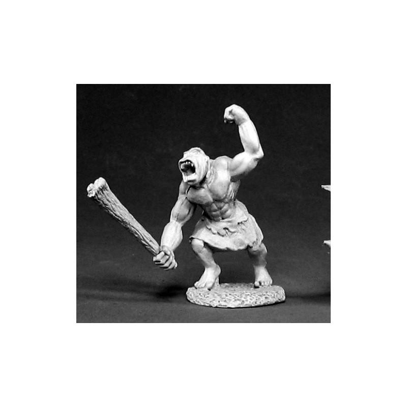 02400 Australopithèque