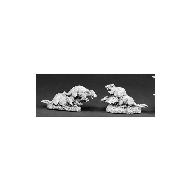 02353 Nués de rats