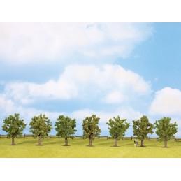 25092 Arbres fruitiers verts