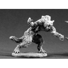 02139 Loup-garou