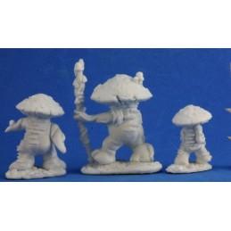 77345 Homme-champignons