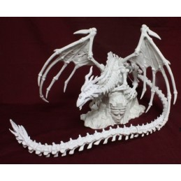 77192 Dragon squelette