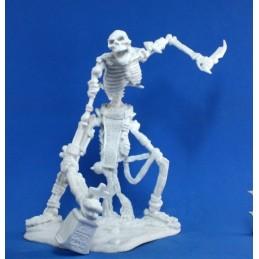 77116 Squelette géant
