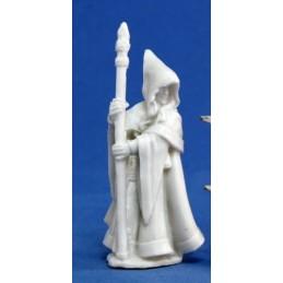 77068 Sorcier elfe des bois