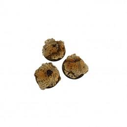 Bases rondes de 50mm (W)