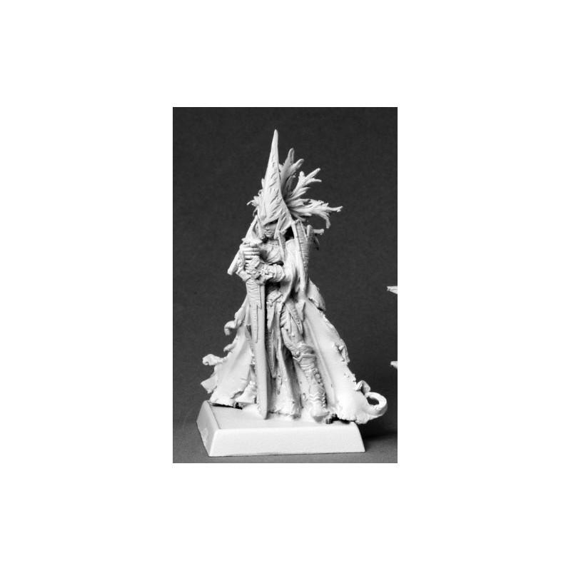 14606 Seigneur de guerre elfe noir