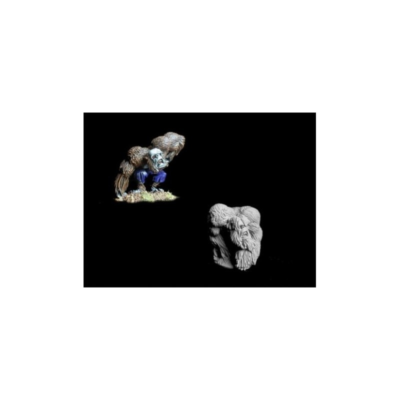 GHI0004 Hybrides de gorilles