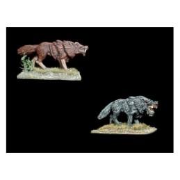 GH00011 - Loups géants