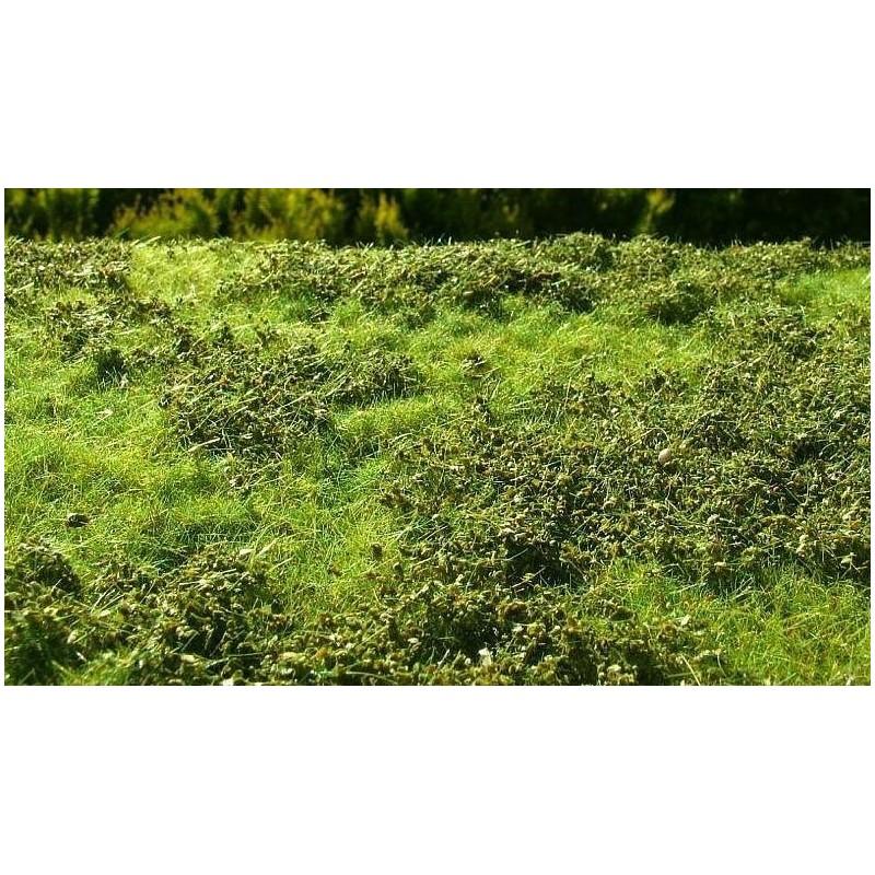 F007 prairie de printemps avec petits buissons (18 x 28cm)
