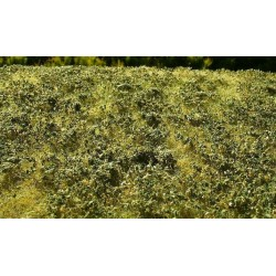 F009 prairie d'automne avec petits buissons (18 x 28cm)