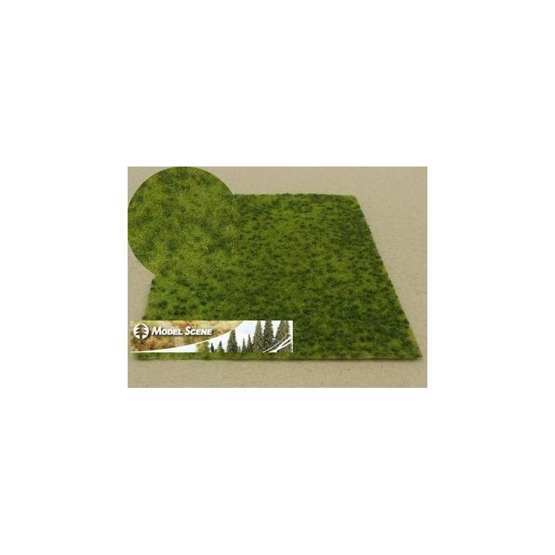 F017 prairie d'été avec de petites touffes (18 x 28cm)