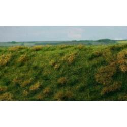 F022 champ en jachère fin d'été (18 x 28cm)