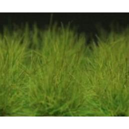 GL016 40 touffes XL vert moyen(6-16mm)