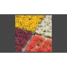 GGSET-MF Fleurs mixtes