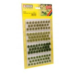 07127 Touffes verts variés