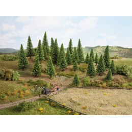 26827 Sapins rouges