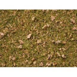 12133 Flocage herbe alpage