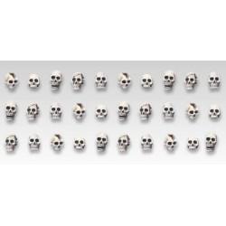 Set de 30 crânes