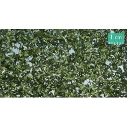 980-31SX Feuillage de chêne printanier