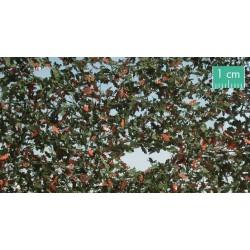 980-33SX Feuillage de chêne début d'automne