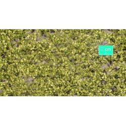 910-31SX Feuillage de bouleau printanier