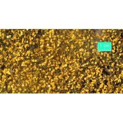 910-34SX Feuillage de bouleau fin d'automne