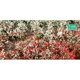 726-32SX touffes fleuries estivales