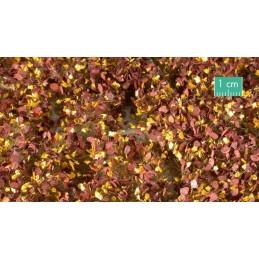 725-34SX Mauvaises herbes fin d'automne