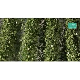 766-32SX Bandes agricoles avec feuilles estivales