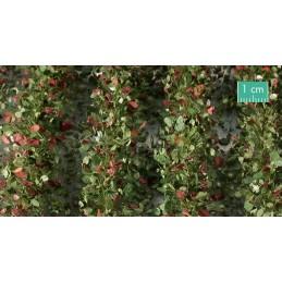 766-33SX Bandes agricoles avec feuilles début d'automne