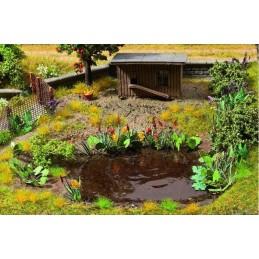 14052 17 plantes aquatiques et de berge en 5 types différents