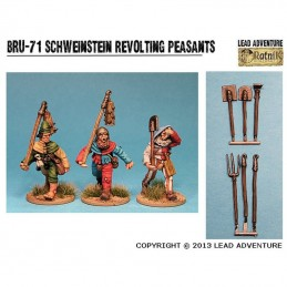 BRU-71 Paysans révoltés de Schweinstein