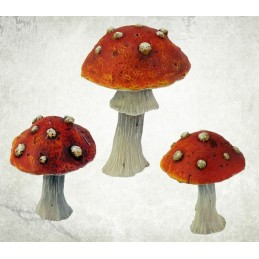 Grands champignons toxiques